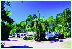 Tropical Hibiscus Caravan Park - Accommodation Airlie Beach
