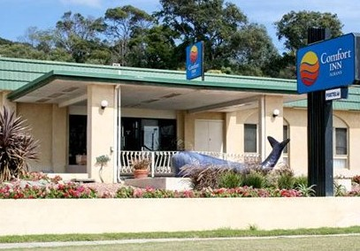 Comfort Inn Albany - Accommodation Airlie Beach