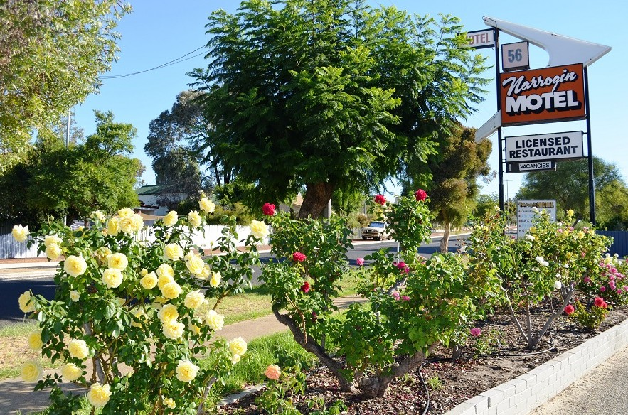 Narrogin Motel - Accommodation Airlie Beach