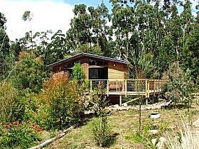 Southern Forest Accommodation - Accommodation Airlie Beach