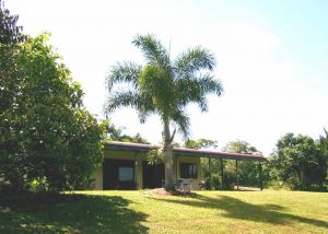 Daintree Mountain View Retreat and Vanilla Beans - Accommodation Airlie Beach
