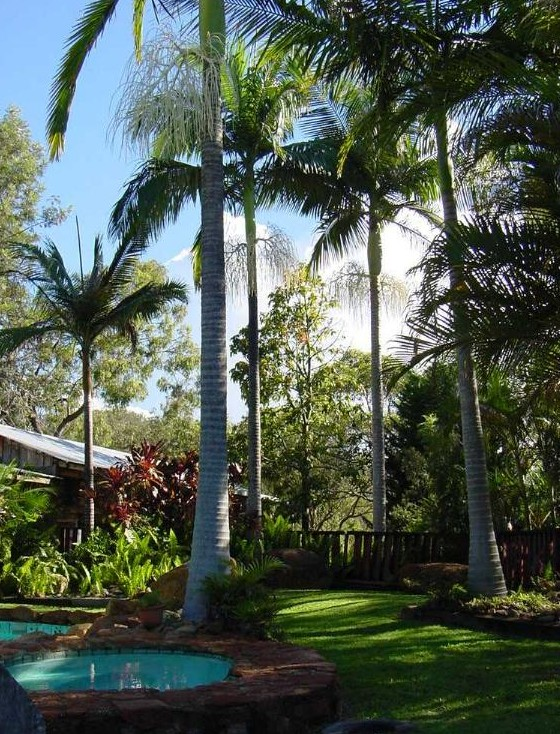 Hidden Valley Cabins - Accommodation Airlie Beach