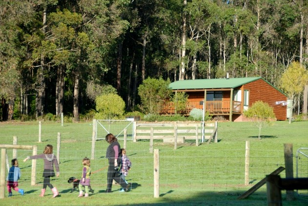 Diamond Forest Farm Stay - Accommodation Airlie Beach