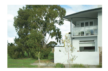 ParkSide Stay - Accommodation Airlie Beach