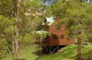 Hookes Creek Forest Retreat - Accommodation Airlie Beach
