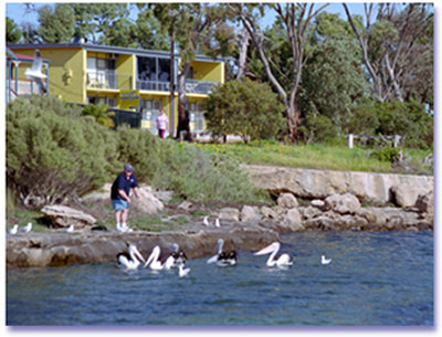 Almonta Holiday Apartments - Accommodation Airlie Beach