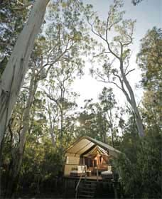 Paperbark Camp - Accommodation Airlie Beach