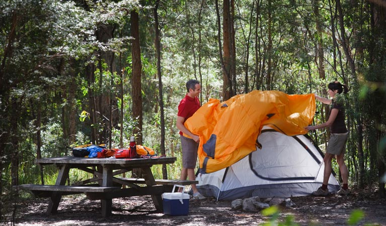 Bald Rock campground and picnic area - Accommodation Airlie Beach