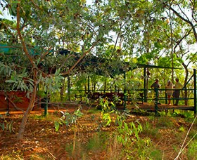 Arnhemland Barramundi Nature Lodge - Accommodation Airlie Beach