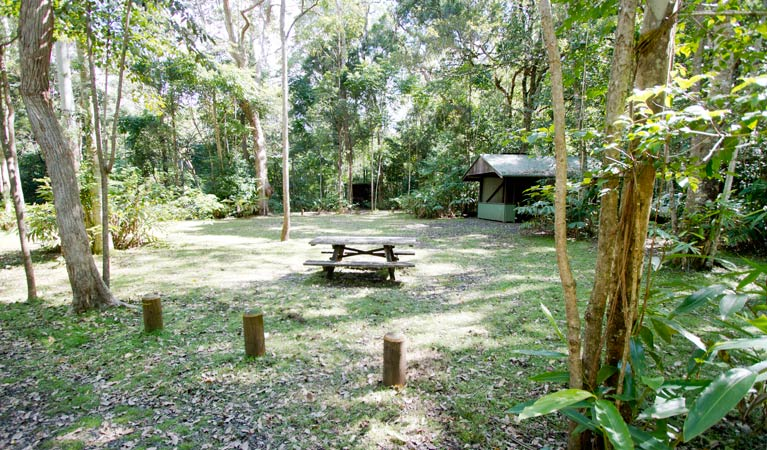 Iron Pot Creek campground - Accommodation Airlie Beach