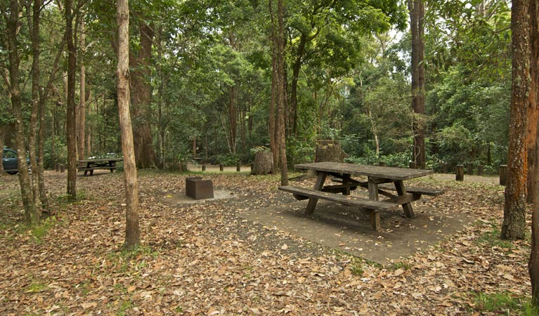 Sheepstation Creek campground - Accommodation Airlie Beach