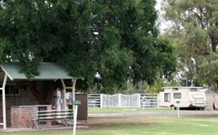 Warialda Caravan Park - Accommodation Airlie Beach
