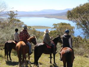Reynella Homestead and Horseback Rides - Accommodation Airlie Beach