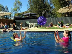 Kingston On Murray Caravan Park - Accommodation Airlie Beach