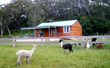 Moorallie Cottage Farm Stay - Accommodation Airlie Beach
