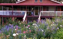 Rose Patch Bed and Breakfast - Accommodation Airlie Beach