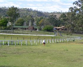 Kellarni Downs Farmstay-Scenic Rim - Accommodation Airlie Beach
