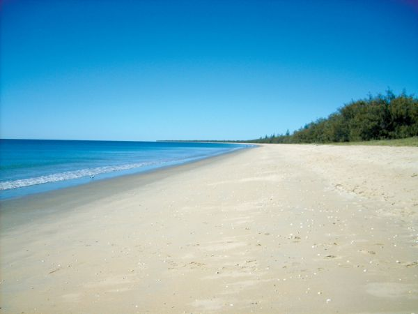 Woodgate Beach Tourist Park - Accommodation Airlie Beach