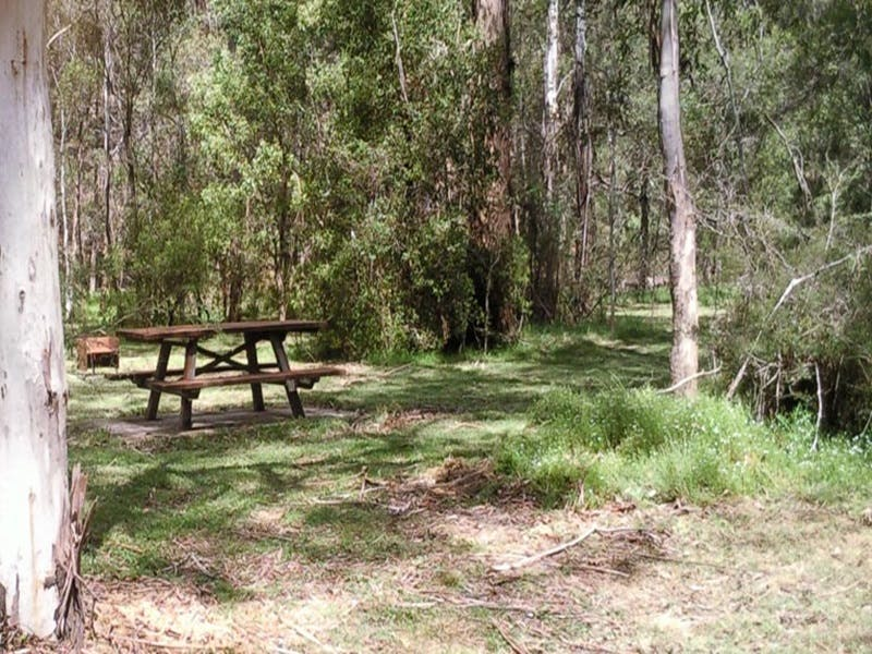 Mulloon Creek campground - Accommodation Airlie Beach