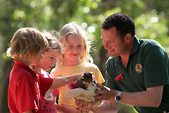 Cleland Wildlife Park - Accommodation Airlie Beach
