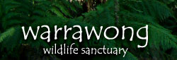 Warrawong Wildlife Park - Accommodation Airlie Beach