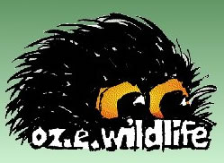 OZe Wildlife - Accommodation Airlie Beach