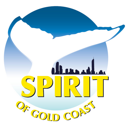 Spirit of Gold Coast Whale Watching - Accommodation Airlie Beach