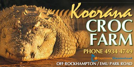 Koorana Saltwater Crocodile Farm - Accommodation Airlie Beach