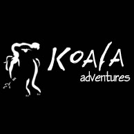 Koala Adventures - Accommodation Airlie Beach
