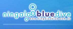 Ningaloo Blue Dive - Accommodation Airlie Beach