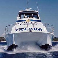 Sunshine Coast Fishing Charters - Accommodation Airlie Beach