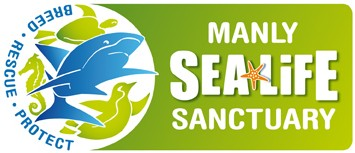 Manly SEA LIFE Sanctuary - Accommodation Airlie Beach