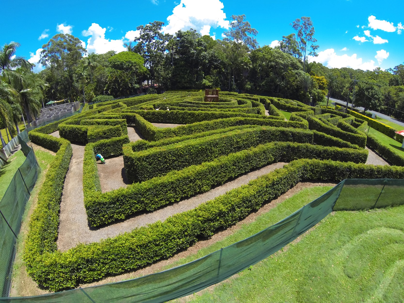Bellingham Maze - Accommodation Airlie Beach