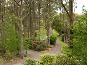 Mount Lofty Botanic Garden - Accommodation Airlie Beach