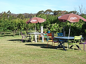 Cerise Brook Orchard  Family Golf - Accommodation Airlie Beach