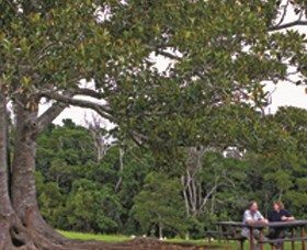 Ravensbourne National Park - Accommodation Airlie Beach
