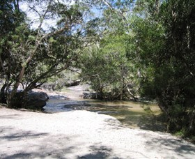 Davies Creek National Park and Dinden National Park - Accommodation Airlie Beach