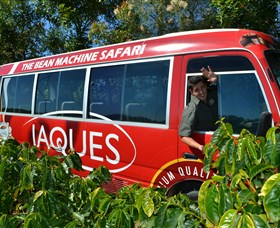 Jaques Coffee Plantation - Accommodation Airlie Beach