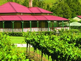 OReillys Canungra Valley Vineyards - Accommodation Airlie Beach