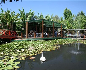 Blue Lotus Water Garden - Accommodation Airlie Beach