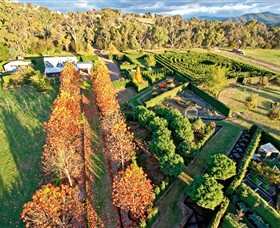 High Country Maze - Accommodation Airlie Beach