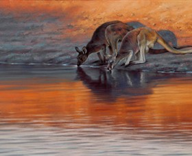 Steve Morvell Wildlife Art - Accommodation Airlie Beach