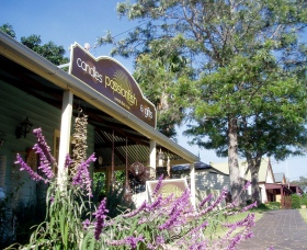 Passionfish Candles - Accommodation Airlie Beach