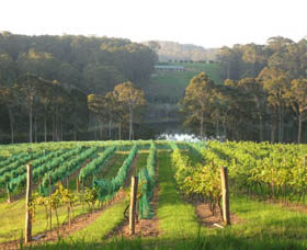 Tilba Valley Wines - Accommodation Airlie Beach