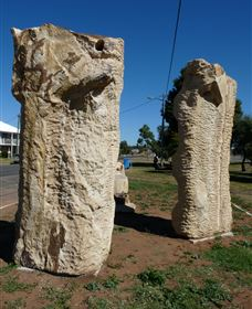 Fossilised Forrest Sculptures - Accommodation Airlie Beach