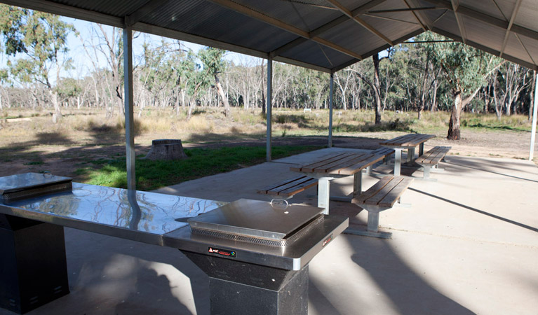 Yanga Woolshed picnic area - Accommodation Airlie Beach