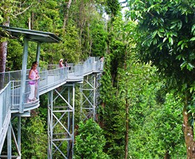 Mamu Tropical Skywalk - Accommodation Airlie Beach