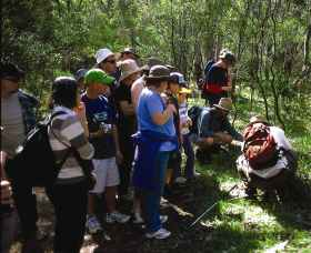 Warrumbungle National Park Discovery Program - Accommodation Airlie Beach