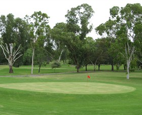 Moree Golf Club - Accommodation Airlie Beach