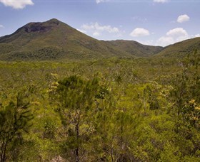 Kutini-Payamu Iron Range National Park CYPAL - Accommodation Airlie Beach